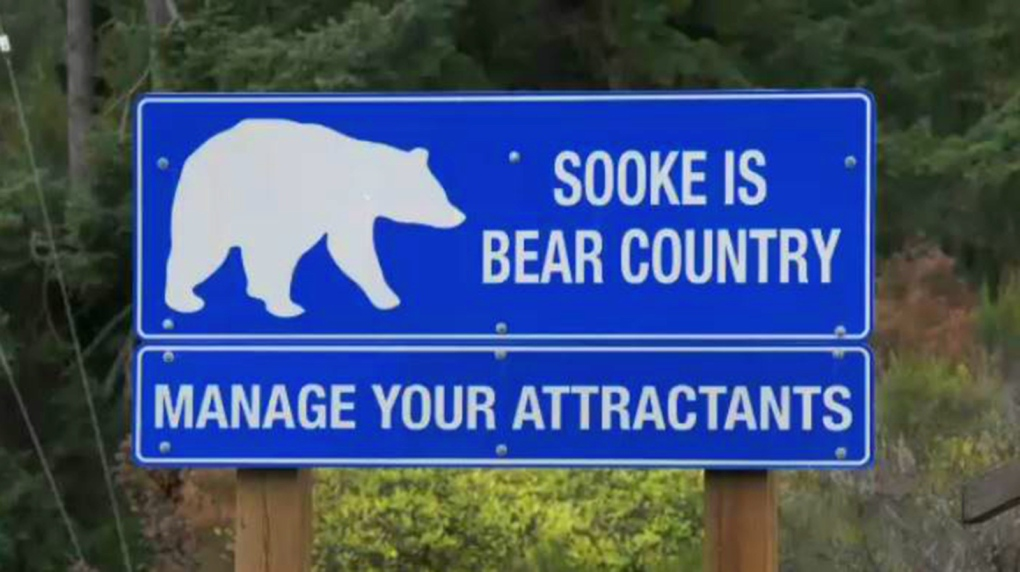 Bear and cougar encounters down in Sooke