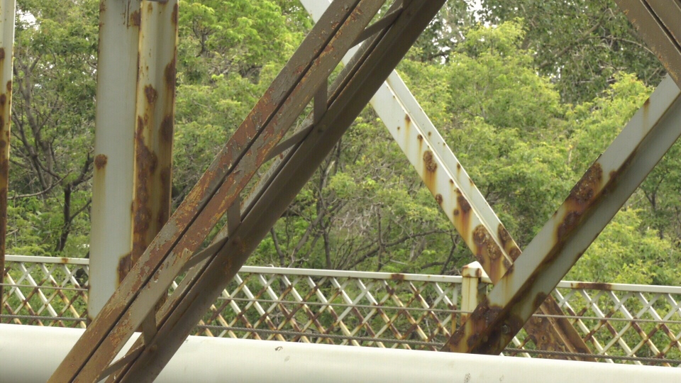 The Edmonton Heritage Council says the Low Level Bridge is in need of repairs.