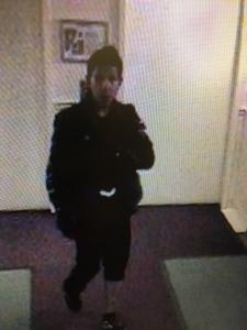 Security cam picture of break in suspect