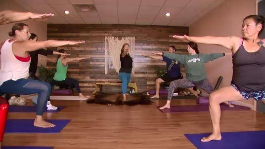 indigenous yoga