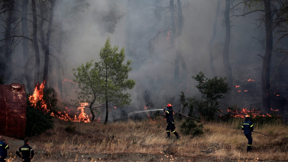 Firefighters try to extinguish a wildfire in Makrymalli village on the Greek island of Evia, Wednesday, Aug. 14, 2019. (AP Photo/Yorgos Karahalis)