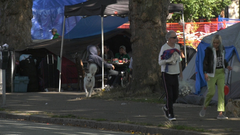 Tents set up in Oppenheimer park, across the street from local businesses.