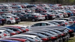 In this May 1, 2015, file photo Ford Focus vehicles are seen on a storage lot in Ypsilanti, Mich. (AP Photo/Carlos Osorio)