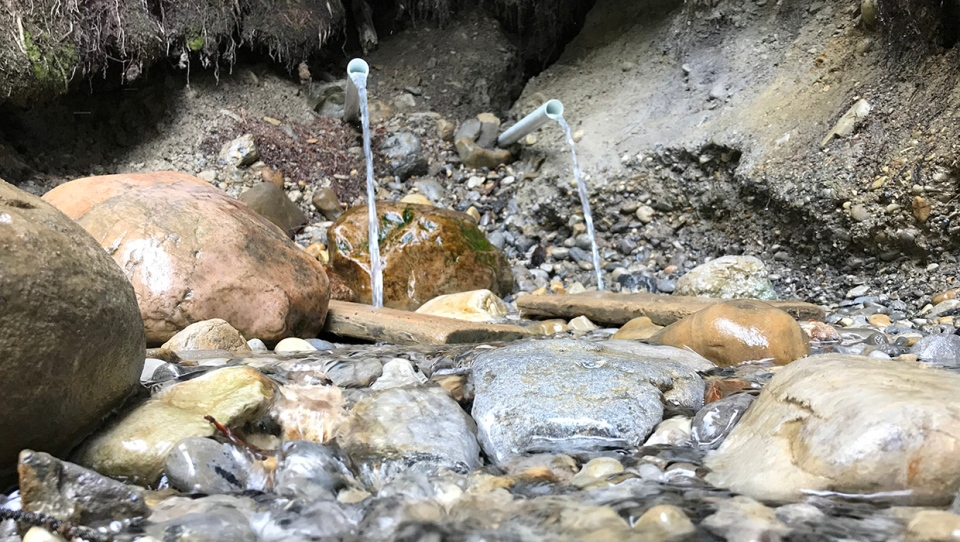 The watering hole along the Palliser Trail in Canmore has drawn visitors looking for natural, unfiltered water
