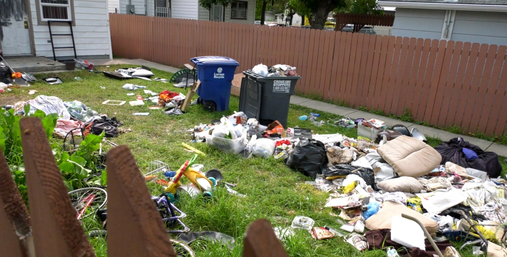 Garbage in yard