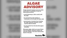 Algae advisory sign