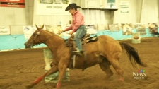 Barrel racing championships