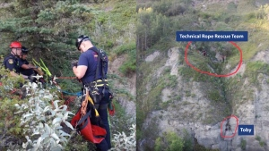 A dog was rescued from a cliff in northwestern Alberta. (Source: County of Grande Prairie)