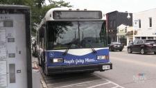 Midland transit funding