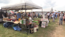 The flea market hosts roughly 900 vendors, drawing thousands of people to Princess Louise Park searching for collectibles, antiques, and bargains.