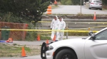 Saanich police were called to Crease Avenue after neighbours found a man's body on the street.