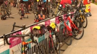 Cancer ride goes off without a hitch