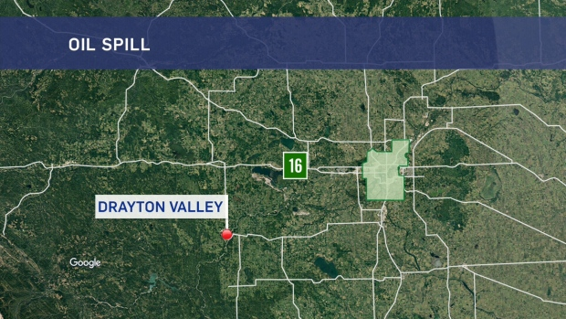 An oil spill was reported to the Alberta Energy Regulator 140 kilometres southwest of Edmonton, near Drayton Valley, on Thursday.