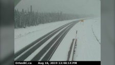 Highway cameras from DriveBC showed heavy accumulation on the Alaska Highway south of Fort Nelson, roughly 175 kilometres north of Fort St. John. (DriveBC)