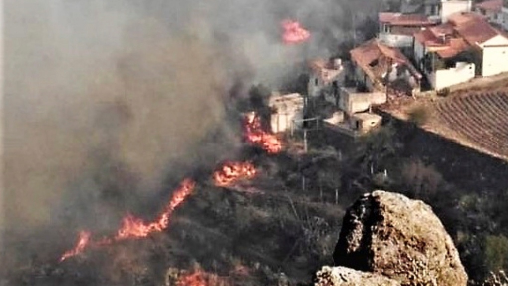 Wildfire on Canary Islands forces evacuation of 8,000