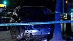 An SUV crashed into a tree in Vancouver's Marpole area Sunday night.