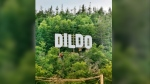 A Hollywood-like sign can be seen over the town of Dildo, Newfoundland in Canada in this undated handout photo provided August 19, 2019. THE CANADIAN PRESS/HO, Marilyn Crotty