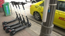 E-scooters hit Edmonton streets