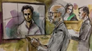 Fereidoon Hayatibahari appears in a court via video link on Aug. 19, 2019. (Pam Davies/CTV News Toronto)