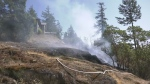 Sooke Brush Fire