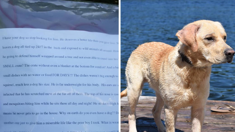 A photo of a chilling note an Ontario family received after they began trying to track down their stolen dog, who is pictured on the right. (Jordin Legate/Facebook)