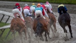 Horses kick up mud as they round a corner during a stakes race at Hastings Racecourse prior to the homecoming race featuring Mario Gutierrez, of Mexico, who rode I'll Have Another to win two legs of this year's Triple Crown, in Vancouver, B.C., on Monday July 2, 2012. Gutierrez got his start at the Vancouver track and returned to compete in two races Monday. THE CANADIAN PRESS/Darryl Dyck