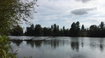 A calm day at Como Lake Park in Coquitlam. (Cristina Chuasieng photo)