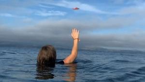 Trending: Surviving a plane crash