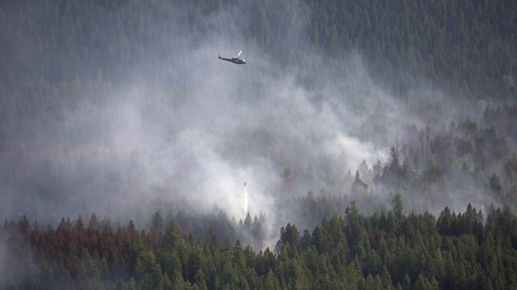 Hotter, larger fires turning boreal forest into carbon source: research