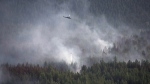 A helicopter dumps a load of water on the Philpot Road fire outside of Kelowna, B.C., Monday, August 28, 2017. New research suggests that bigger, hotter wildfires are turning Canada's vast boreal forest into a net source of climate-changing greenhouse gases. THE CANADIAN PRESS/Jonathan Hayward
