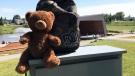 Heidi Erickson found this teddy bear inside a backpack left on a post at a park in Airdrie, Alta. (Heidi Erickson / Facebook)