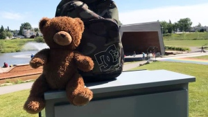 Teddy bear found