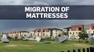 Mattress mayhem: Inflatable beds run amok in Denve