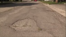 Residents have started filling potholes by themselves on Eleanor Court in Guelph.