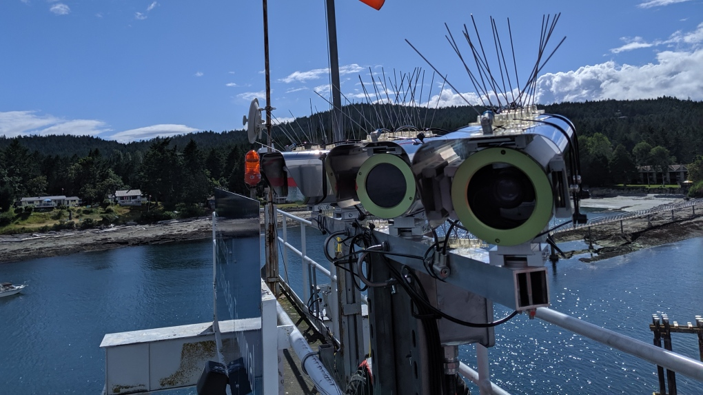 Scientists track whales with new Galiano Island thermal cameras