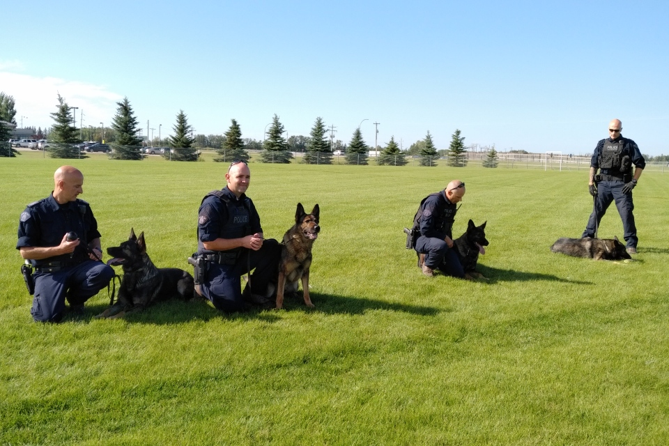 The RCMP showed off its canine unit in Stony Plain on Wednesday, Aug. 21, 2019.
