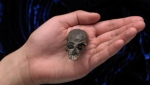 This undated handout photo obtained August 21, 2019 courtesy of American Museum of History shows an exceptional fossil skull of Chilecebus carrascoenis, a 20-million-year-old primate from the Andes mountains of Chile being held in a hand. AFP