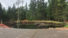 A massive sinkhole is seen in Oxford, N.S., on Aug. 22, 2019. The sinkhole first appeared at the Oxford Lions Park in August 2018. (Kate Walker/CTV Atlantic)