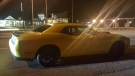 A yellow Dodge Challenger is impounded by officers following a traffic stop on Hwy 11, Oro-Medonte on Wed., Aug. 22, 2019 (OPP)