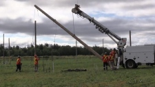VIDEO: Hundreds of hydro poles being installed in Verner, east of Sudbury, for the International Plowing Match. Brittany Bortolon reports.