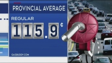 VIDEO: CTV's Dana Roberts looks into why gas prices vary across northern Ontario and why they are higher than our southern counterparts.