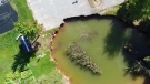 Oxford sinkhole could get bigger, report says