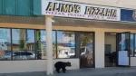 A bear went into a Slave Lake, Alta., barbershop on Wednesday, Aug. 21, 2019.