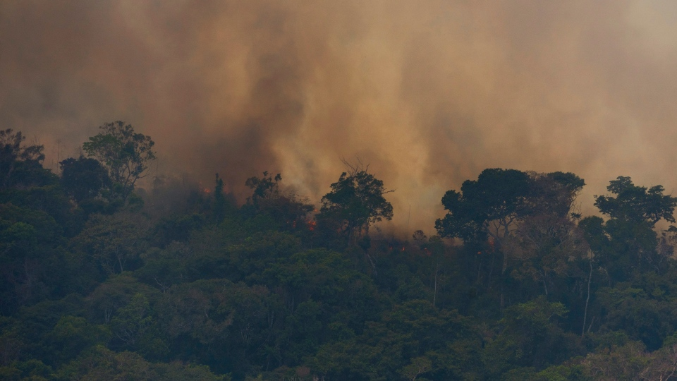Fire consumes the jungle near Porto Velho, Brazil, Friday, Aug. 23, 2019. Brazilian state experts have reported a record of nearly 77,000 wildfires across the country so far this year, up 85% over the same period in 2018. (AP Photo/Victor R. Caivano)