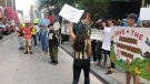 Protestors gather outside the Brazil Embassy in Toronto to demand the government help fight the Amazon fires. (Tom Podolec/CTV News Toronto)