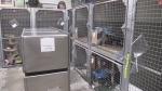 More than reno needed at St Thomas Animal Shelter?