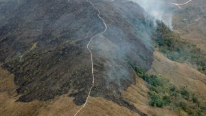 Thousands of fires sparked in the Amazon