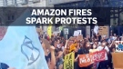 European protesters call for action on Amazon wild