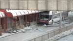 OC Transpo driver charged in deadly crash