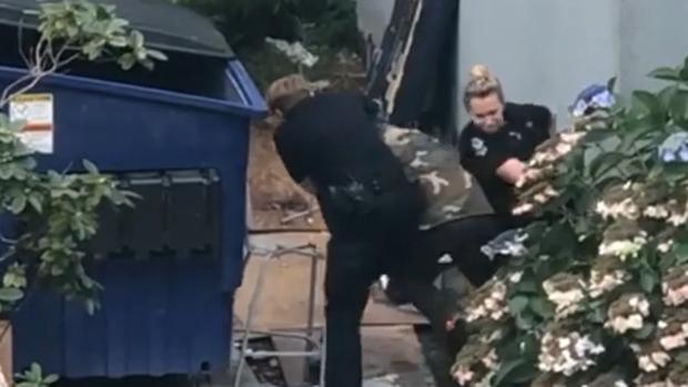 Video of arrest attempt